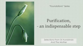 Purification, an Indispensable Step 1080