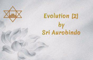 09 Evolution [2]