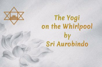 16-the-yogi-on-the-whirlpool