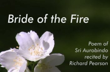 Bride of the Fire 1