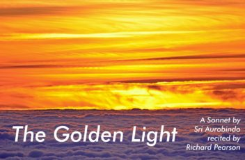 The Golden Light wo