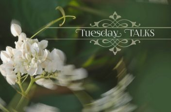 2016 Tuesday Talks Video Cover USE