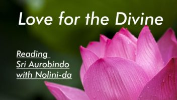 12 Love for the Divine