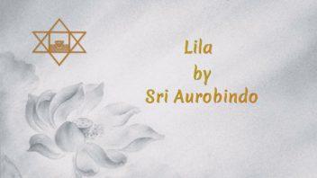 42 Lila