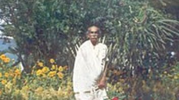 Nolini KG a crop ed