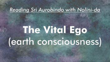 14 The Vital Ego 720