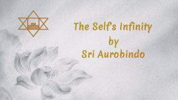 40 The Selfs Infinity
