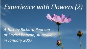Experience with Flowers 2