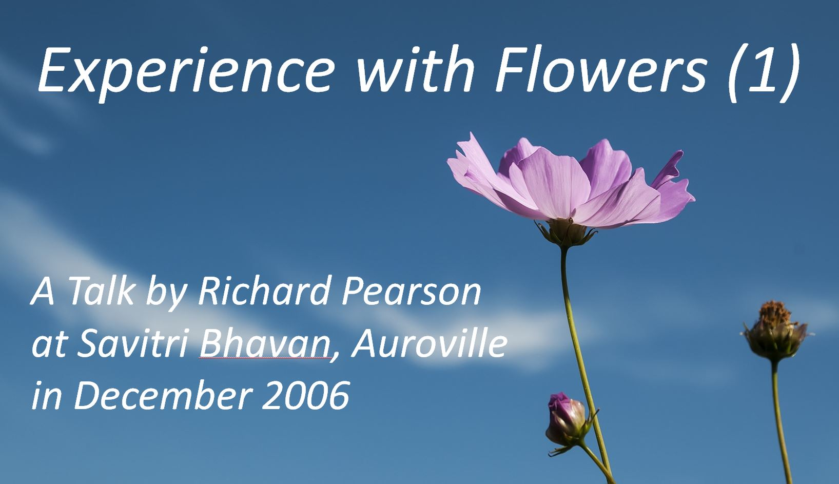 """""""Experience with Flowers (1)"""" - Richard Pearson"""
