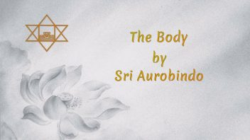 54 The Body