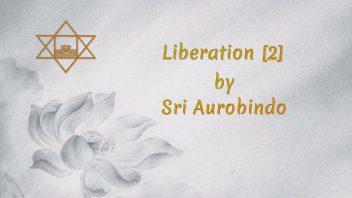 55 Liberation 2