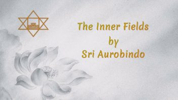 74 The Inner Fields