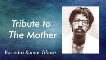 Tribute to The Mother - Barin da