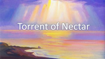 02 Torrent of Nectar