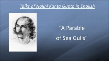 NTE 17 A Parable of Sea Gulls