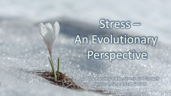 Stress - an Evolutionary Perspective cover