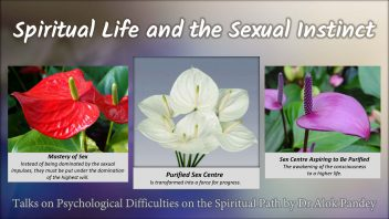 Spiritual life and the sexual instinct
