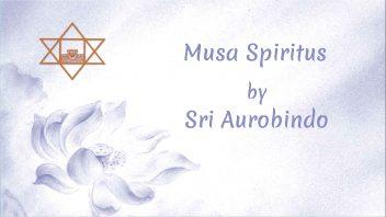LP16 Musa Spiritus