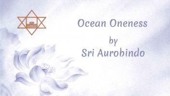 LP28 Ocean Oneness