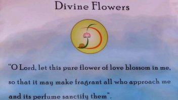 Divine flowers at Auroville's Savitri Bhavan 21 2 CR