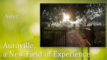 Auroville a new field of experience 2a