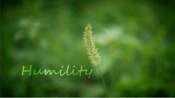 2019 Humility_Art Studio 12 Qualities HF