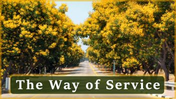 The Way of Service2