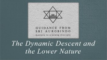 45 The Dynamic Descent and the Lower Nature