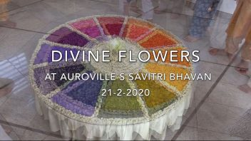 Divine Flowers cover 1080