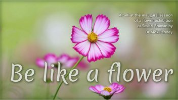 Be like a flower cover ccs