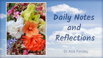 Daily Notes and Reflections cover 1080