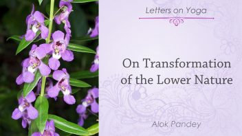 On Transformation of the Lower Nature