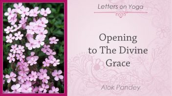 Opening to the Divine Grace fin