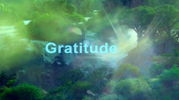 2020 Gratitude