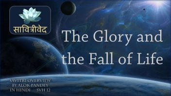 SVH 12 The Glory and the Fall of Life B2C3