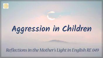 RE 049 Aggression in Children