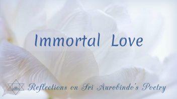 SAP 02 Immortal Love cc