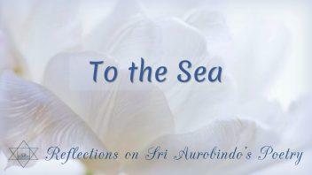 SAP 04 To the Sea