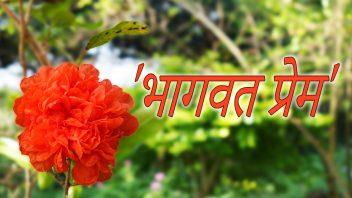 SMF Divine Love Pomegranate Hin