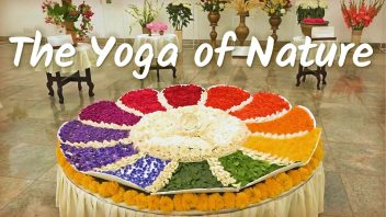 The Yoga of Nature cc