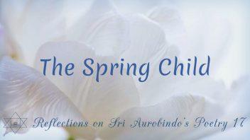 SAP 17 The Spring Child