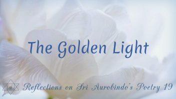 SAP 19 The Golden Light