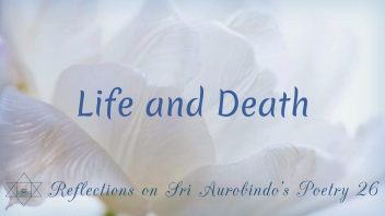 SAP 26 Life and Death