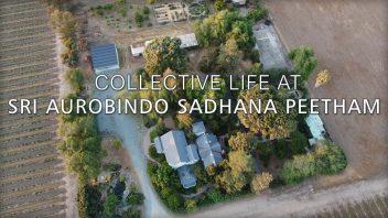 2021 05 Collective Life at SASP2