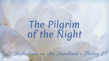 SAP 029 The Pilgrim of the Night