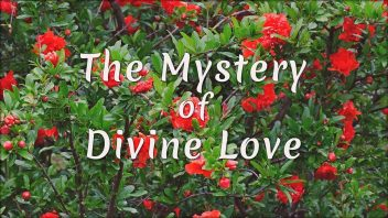 TE 342 The Mystery of Divine Love