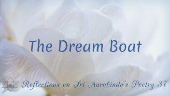 SAP 037 The Dream Boat