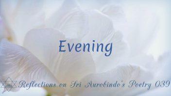 SAP 039 Evening